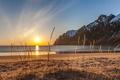 Картинка волны, пляж, горы, отражение, куст, зеркало, восход солнца