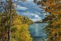 Картинка осень, лес, небо, листья, облака, деревья, тучи