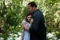 Картинка Мэгги, Maggie, триллер, драма, ужасы, Arnold Schwarzenegger, Abigail Breslin