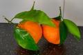 Картинка цитрус, мандарин, плод, листья