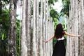 Картинка девушка, пальмы, волосы, аллея