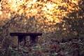 Картинка свет, парк, скамья