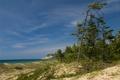 Картинка песок, море, небо, трава, деревья, берег