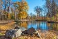 Картинка осень, листья, деревья, пруд, парк, камни, дорожка