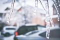 Картинка лед, зима, ветки, улица