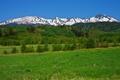 Картинка небо, трава, снег, деревья, горы