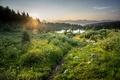 Картинка green, grass, Beautiful, sky, landscape, nature, water