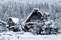 Картинка зима, снег, дом, Япония, остров Хонсю, Гокаяма, Сиракава-го