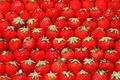 Картинка клубника, ягода, красная, ряды