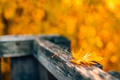 Картинка осень, природа, лист