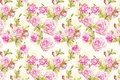 Картинка цветок, роза, текстура