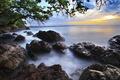 Картинка море, деревья, камни, берег