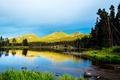 Картинка лес, трава, деревья, горы, озеро, камни, берег