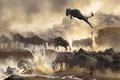 Картинка брызги, прыжок, водоём, стадо, антилопы