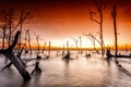 Картинка море, закат, природа