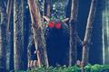 Картинка лес, деревья, игрушки, рога, красные глаза, Bone, Rat Creature