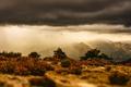 Картинка трава, солнце, горы, серые облака буря