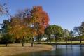 Картинка осень, деревья, пруд, парк