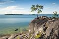 Картинка небо, скала, озеро, дерево, берег, остров