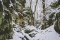 Картинка зима, снег, деревья, ветки, скала, камень, мужчина