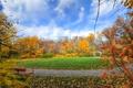 Картинка осень, небо, трава, листья, деревья, парк, лужайка