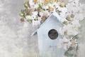 Картинка Цветы, Домик, House Flowers