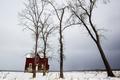 Картинка дом, деревья, зима