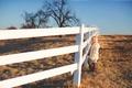 Картинка настроение, забор, девочка