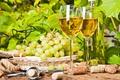 Картинка листья, природа, вино, бокал, бутылка, пробка, штопор