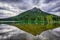 Картинка лес, вода, деревья, тучи, озеро, отражение, гора