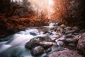 Картинка деревья, пейзаж, река, камни