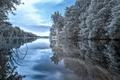 Картинка деревья, река, природа