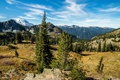 Картинка озеро, Rocky Mountain National Park, горы, лес, деревья, камни, США