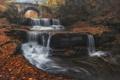 Картинка осень, листья, деревья, мост, каскад