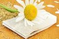 Картинка пакетик, цветок, чай, лепестки, ромашка