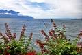 Картинка горизонт, Монтрё, фото, горы, Швейцария, море