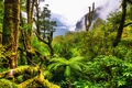 Картинка green, forest, mountains, plants