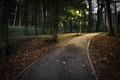 Картинка осень, парк, дорожка
