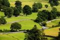 Картинка дорога, трава, деревья, поля, Великобритания, вид сверху, участки