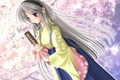 Картинка цветы, весна, аниме, сакура, арт, девочка