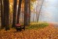 Картинка скамья, парк, осень