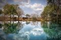 Картинка небо, вода, облака, деревья, отражение, бассейн, зеркало