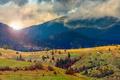 Картинка природа, холмы, радуга, ели, rainbow, nature, hills