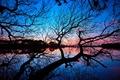 Картинка небо, мост, озеро, дерево, ветви, зеркало, силуэт