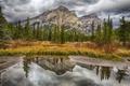 Картинка озеро, тучи, горы, деревья, трава, небо, осень