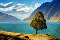 Картинка горы, hdr, озеро, небо, дерево