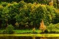 Картинка река, Stuttgart, вода, берег, деревья, Германия, отражение