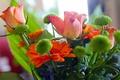 Картинка листья, роза, букет, лепестки
