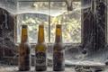 Картинка пиво, окно, паутина, бутылки