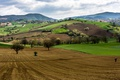 Картинка деревья, горы, холмы, поля, Италия, пугало, Кампанья